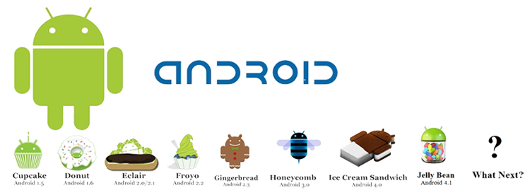 Certification of Android Developer